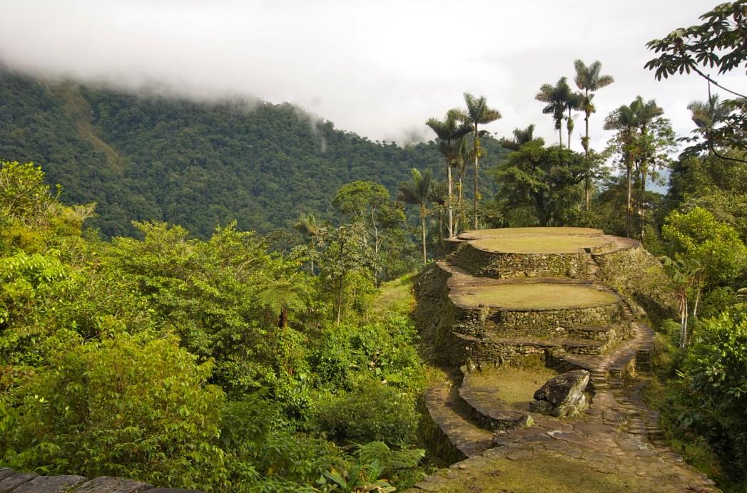 colombia green jungle