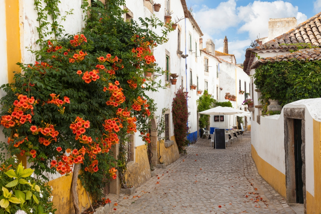 portugal cobblestone alley with flowers and tables