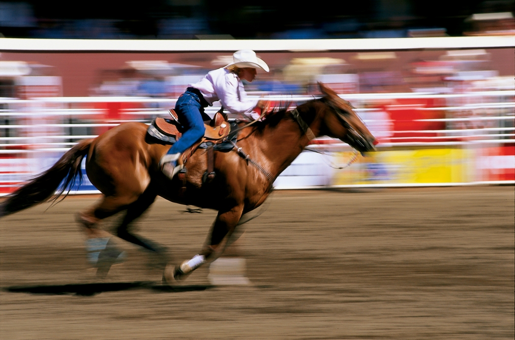 Cowboys And Cowgirls Rule At The Calgary Stampede Skyscanner