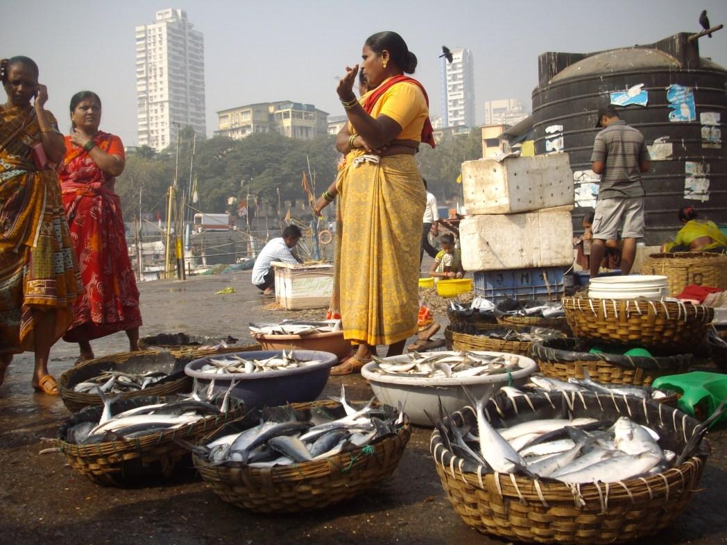 Sassoon Docks Mumbai